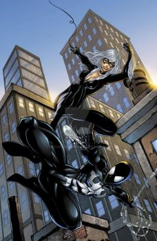 Spiderman black costume and Blackcat colors by seanforney