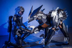Blade wolf handing Raiden her paw again! XD by ProVoltageCosplay