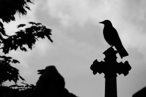 Raven and cross by Heurchon