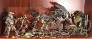 AVP R Shelf by Unicron9