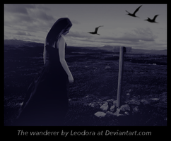The wanderer by Leodora