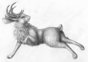 The Venturing Jackalope by Pickledsuicune