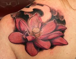 lotus flower by graynd