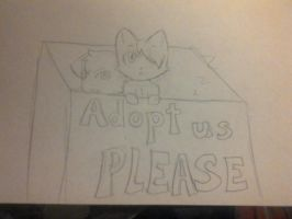 Please Adopt! by PunkinCraker
