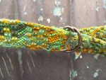Variegated Green and Orange Wool Belt Detail by angua22892