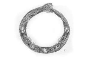 Ouroboros by packness