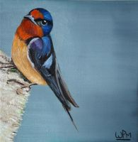 Swallow by WendyMitchell