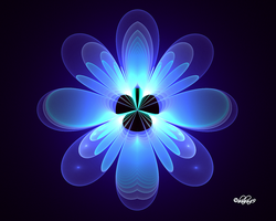 Blue Flower For Erica by baba49