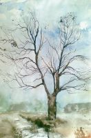 Trees 12 by Cytrus