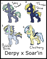 DerpyxSoar'in Shipping Adoptables by Chickfila-Chick