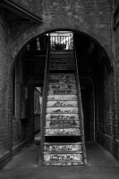 staircase for the ages by davidprentice