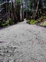 PreMade Background - Pathway by Gracies-Stock