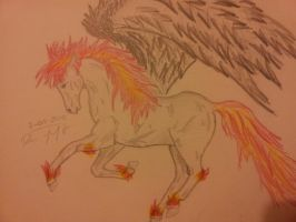 Firey Pegasus by dailybunny