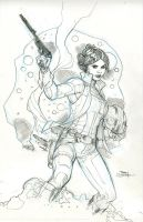 Princess Leia #1 Cover Pencils by TerryDodson