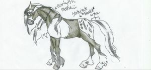 Byrd Request Stallion by horsebackrider22