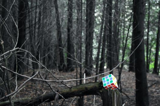 Rubik's Forest by iHartLaRoo