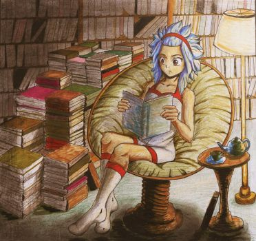 Levy's room. by kittenz92