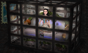 Cabinet of Curiosities by tombraider4ever