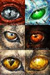Eye Icons by UglyDucklingArt