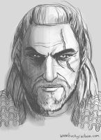 Geralt of Rivia by InAmberClad