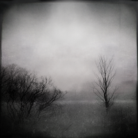 A Grey Light by intao