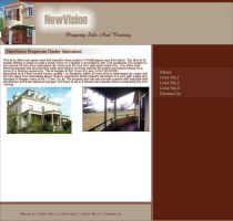 NewVision Property Dealers by zamir