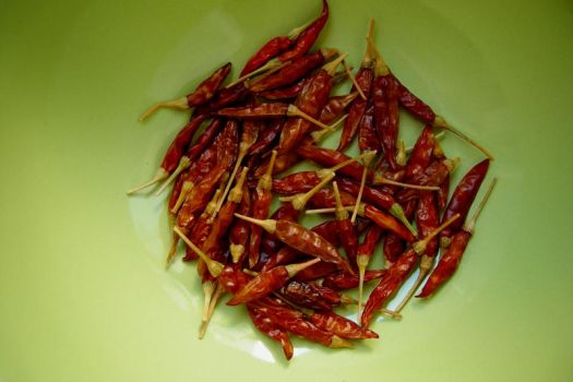 red hot chili pepperss by pra4masoul