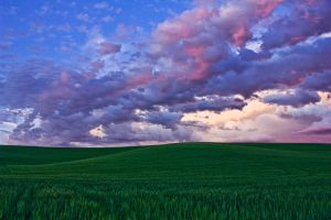Palouse Sunset 2 by krovakny