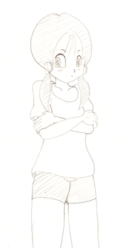 Videl by nwizard2