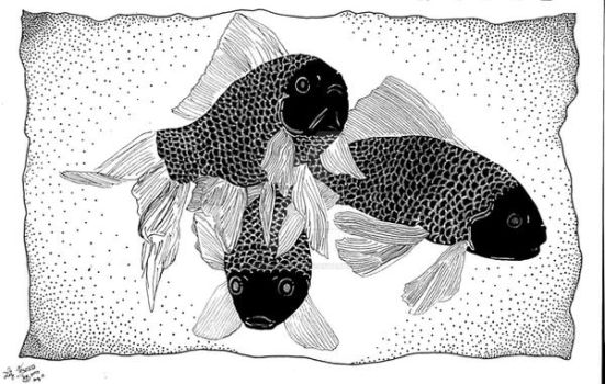 3 Black fishes by hidden-by-art