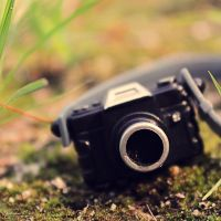 Week 30- chasing the perfect shot by iAmoret