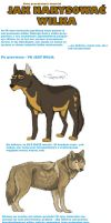 How to draw a wolf PL by AriaDog