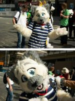 Jip take a pose for the photographer c: by nlorier