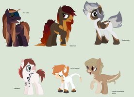 Doge Themed Adopts (CLOSING) by BluesStuff