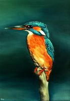 Kingfisher Oil by camillo1978