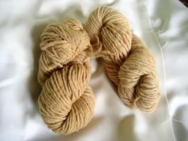 Oak bark dye by tanjaESK