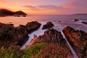 Point Lobos Twilight by enunez