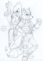 Fox and Falco by hope-n-forever