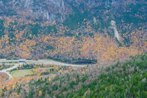 White Mountains  Fall Foliage  121 by FairieGoodMother