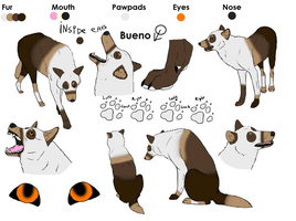 Bueno Ref sheet(UPDATED) by PawesomeSauce