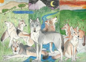 Wolves Around The World by VeronicaRosejones