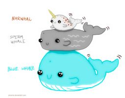 Whaleeees! :3 by elicenia