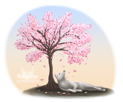 Cherry Blossom Tree - Tattoo Concept by MoonyWings
