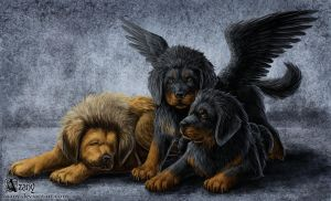 Alatum puppies by Azany