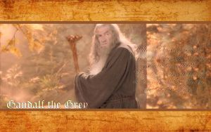 Gandalf the Grey by drkay85