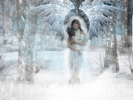 :Winter Angel: by TerryRose