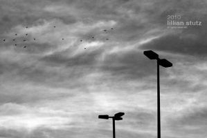 sky and street lights - CZ by OOkunststoff