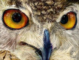 OWL DIGITAL PAINTING smallest by FireLioness