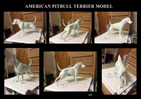 American Pitbull Terrier model by pookyns-5
