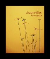 dragonflies by nyndream